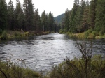 metolius river,camping in oregon,camp sherman,camping camp sherman,trout fishing oregon