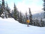 ski bowl,mt hood ski bowl,powder skiing,skiing oregon