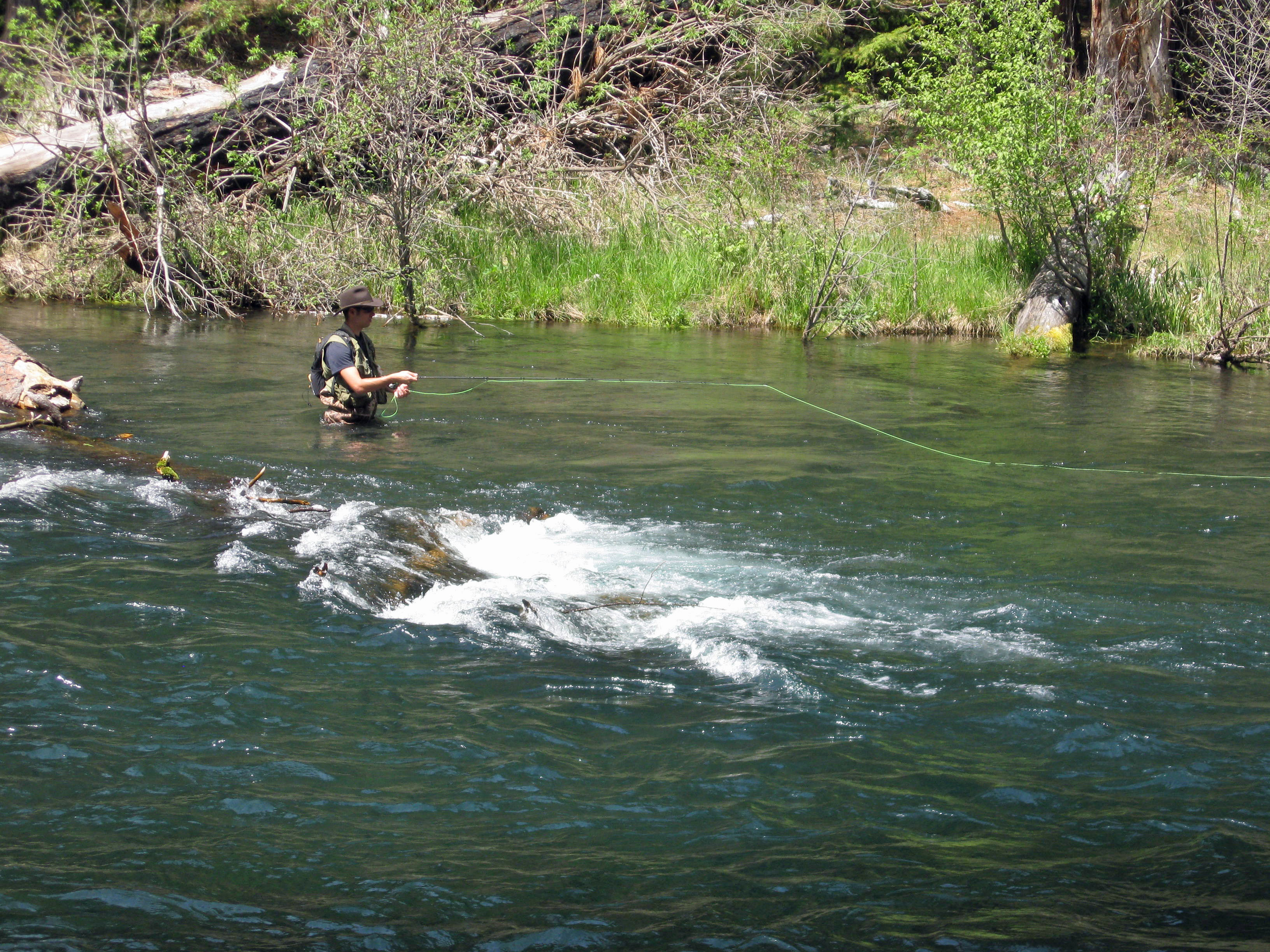 Metolius river cabin fever chronicles getting outdoors for House of metolius