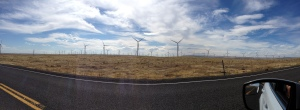Wind Farm Panorama