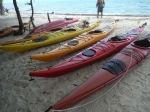 kayaking belize,lighthouse reef,half moon caye