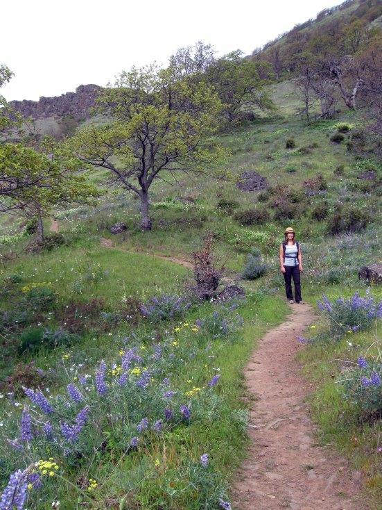 Laura Winding Trail
