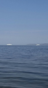 Ferries crossing paths