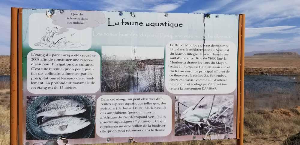 Pond Information resized