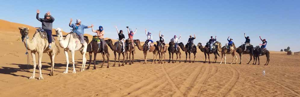 Group on Camels crop
